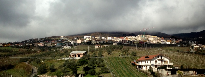 Benvenuti nel nuovo San Lorenzo Maggiore .net